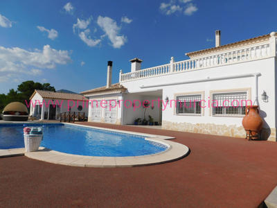 1661: Detached Villa in Lorca